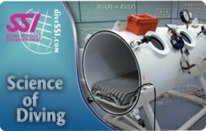specialty-course-science-of-diving-large