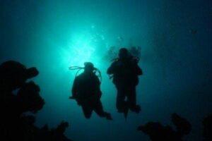 night-diver-02-large